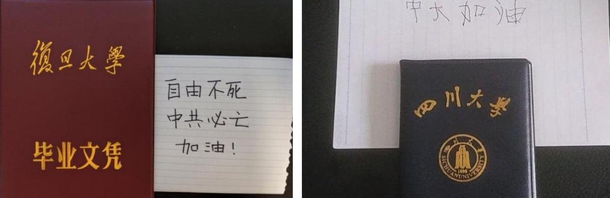 众多大陆学生晒个人证件挺香港