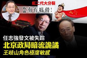 红二代集体反对习近平